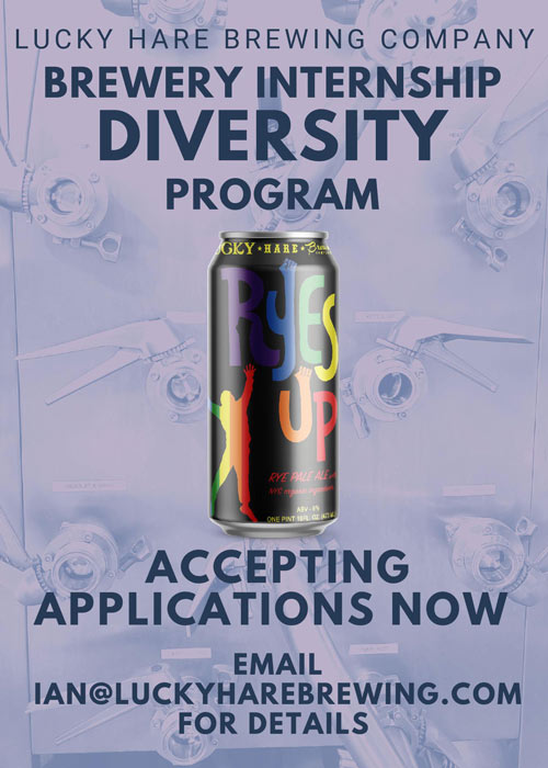 Diversity-Internship-500w.jpg
