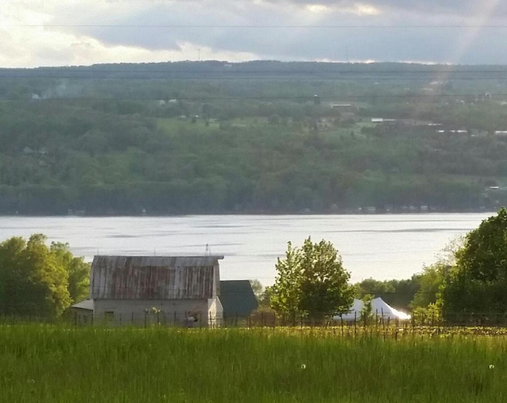 Lucky Hare Brewing in Hector, NY Barn Original Brewery looking at Seneca Lake